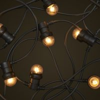 festoon lights black